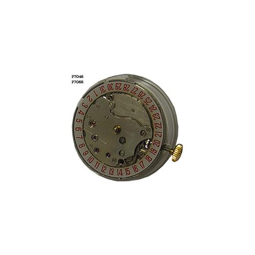 P7066-P7046