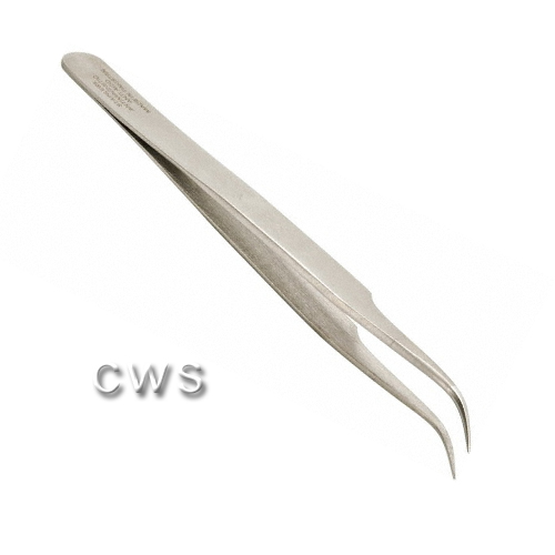Shape 7 - TW0088