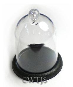 Pocket Watch Dome - W0082