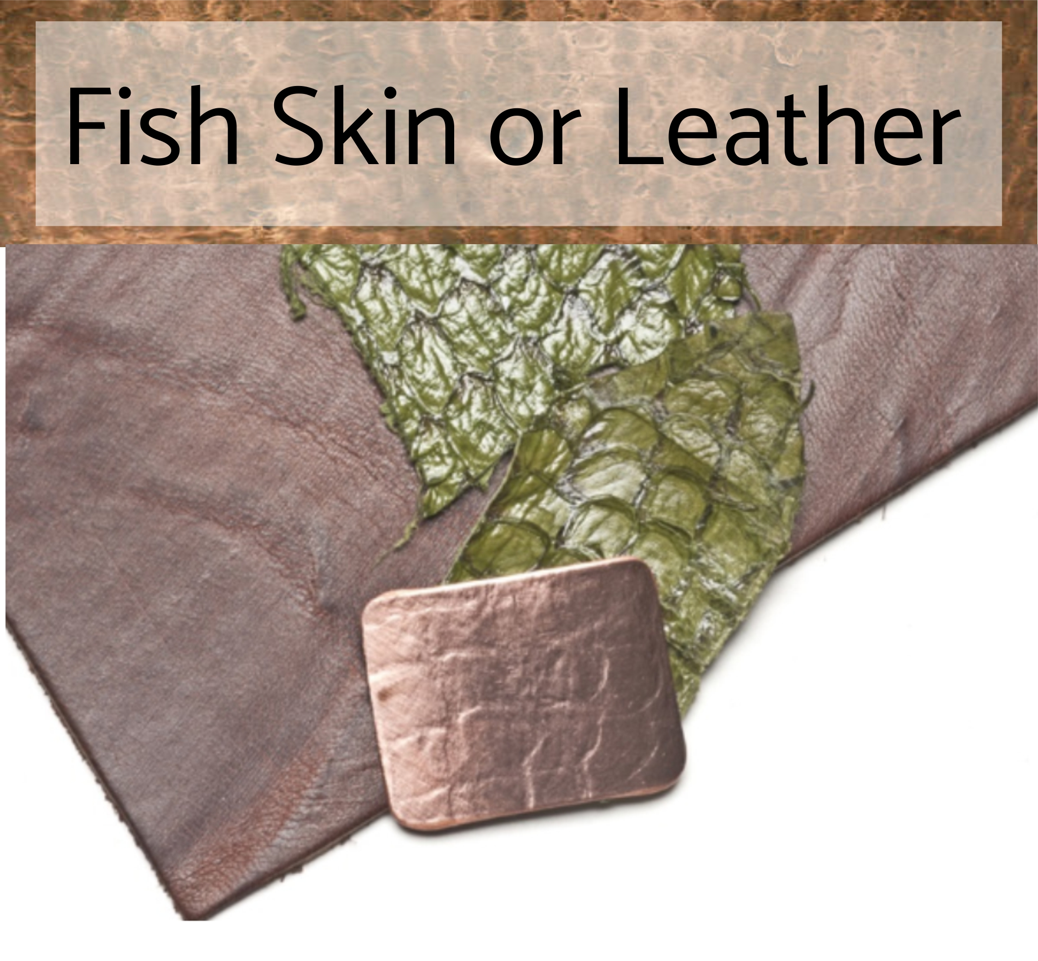 fish skin or leather